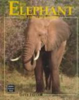 The Elephant and the Scrub Forest