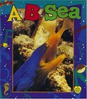 A...B...sea