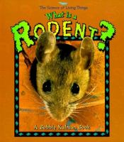 What Is A Rodent?