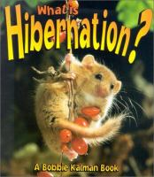 What Is Hibernation?