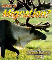 What Is Migration?