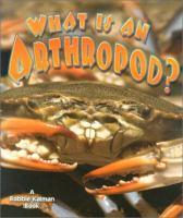 What Is An Arthropod?
