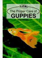 The Proper Care Of Guppies