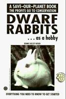 Dwarf Rabbits as A Hobby