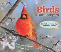 Birds in Our Backyard