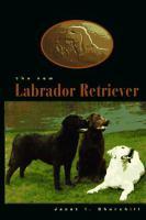 New Labrador Retriever