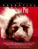 The Essential Guinea Pig