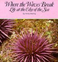 Where the Waves Break