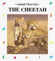 The Cheetah--fast as Lightning