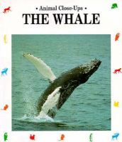 The Whale, Giant of the Ocean