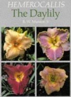 Hemerocallis, the Daylily