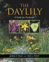 The Daylily