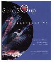 Sea Soup