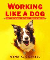 Working Like A Dog