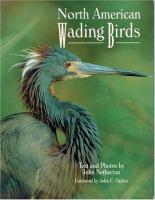 North American Wading Birds