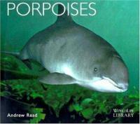 Porpoises