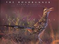 The Roadrunner