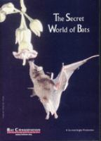 The Secret World of Bats