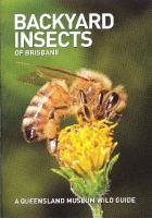 Backyard Insects of Brisbane