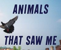 Animals That Saw Me