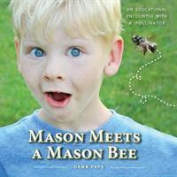 MASON MEETS A MASON BEE by Dawn Viola Pape