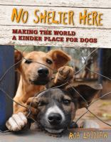 No Shelter Here