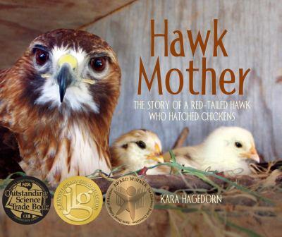 Hawk Mother book jacket