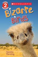 Bizarre Birds