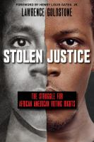 Stolen justice : the struggle for African American voting rights