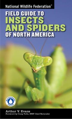 Field Guide to Insects and Spiders & Related Species of North America
