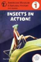 Insects in Action!