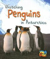 Watching Penguins in Antarctica