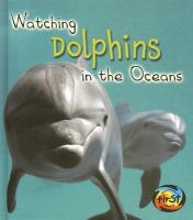 Watching Dolphins in the Ocean