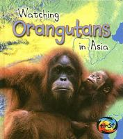 Watching Orangutans in Asia