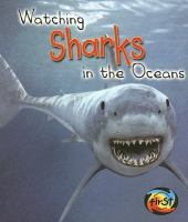 Watching Sharks in the Oceans