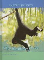 Up A Rainforest Tree