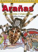 Arañas, por dentro y por fuera