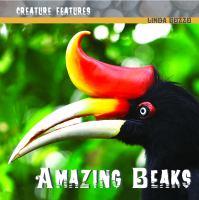 Amazing Beaks