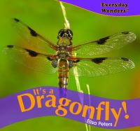 It's A Dragonfly!