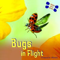 Bugs in Flight