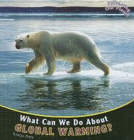 What Can We Do About Global Warming?