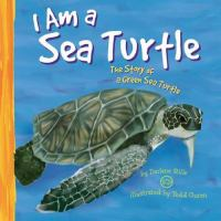 I Am A Sea Turtle