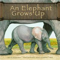 An Elephant Grows up