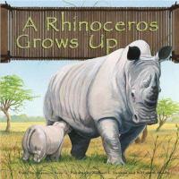 A Rhinoceros Grows up