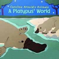 A Platypus' World