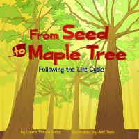 From Seed to Maple Tree