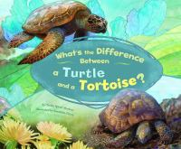 What's the Difference Between A Turtle and A Tortoise?