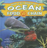What Eats What in An Ocean Food Chain
