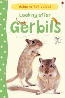 Looking After Gerbils