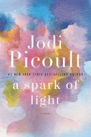 A spark of light [large print] : a novel
